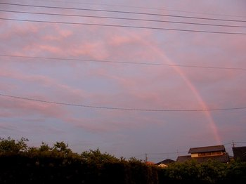 Rainbow100507r