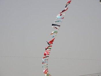 Flag070526