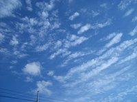 sky0501301549s